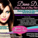 DANA D SALON- BLOWOUT BAR